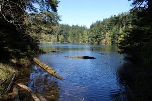 Twin Lakes ~ Orcas Island