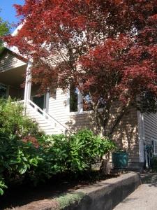 Home of Trillium USA 5762 27th Ave NE, Seattle WA 98105